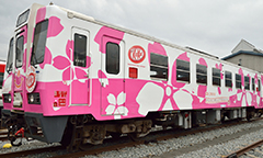 train decorated in cherry blossoms and KitKat logo